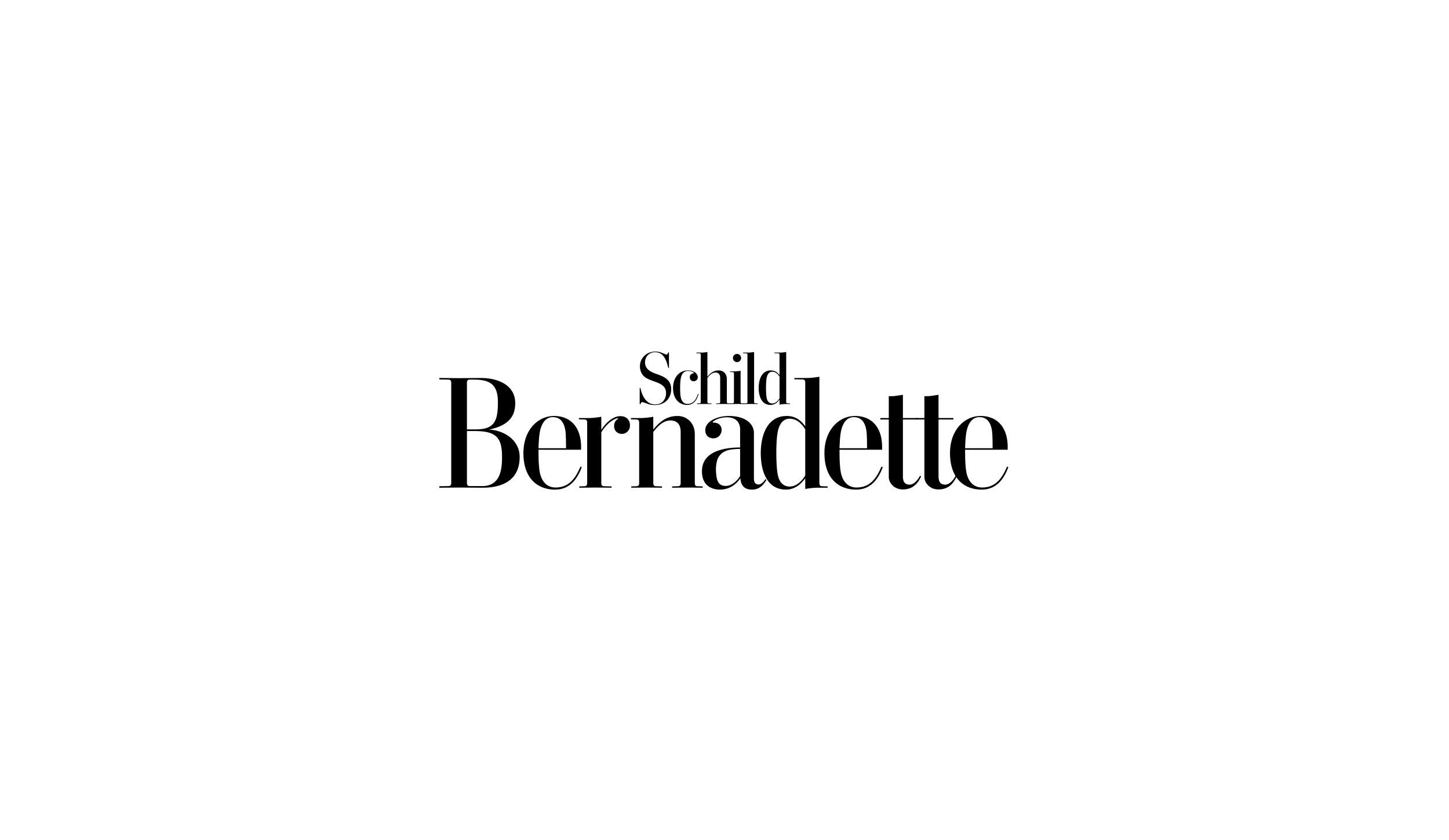 Logo und Branding Bernadette Schild - Werbeagentur aus Tirol
